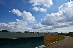 20190614_011_2 (まさちゃん) Tags: 雲 空 夏の雲 農道