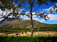 Hidden Valley (Toni Kaarttinen) Tags: southafrica africa cape capetown travel travelling holiday wanderlust westerncape wine winelands stellenbosch hiddenvalley hidden valley mountain mountains winehouse