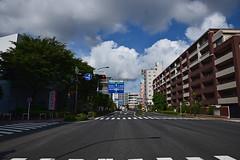 20190614_043_2 (まさちゃん) Tags: 空 雲 国道1号線 夏の雲