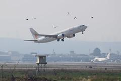 Sundor B738, OM-FEX, TLV (LLBG Spotter) Tags: aircraft b737 tlv airline sundor omfex llbg