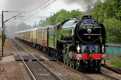 Soft Steam! 60163 (Landscape) Welwyn North 150619 (1Z63) (mmiikkyyhart55009) Tags: 60163 tornado steam locomotive 1z63 dbc charter welwynnorth yorkshirepullman