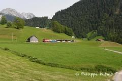MOB: GDe 4/4 6005 à Rossinière (passiontrain.ch) Tags: gde 44 6005 110 ab 308 mob rossiniere vaud suisse slm abb regio express