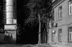 IMG_20190614_0005 (AndreyYer) Tags: moscow bwfilm fed2 industar22