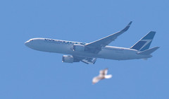 WestJet /  Boeing 767-338(ER) / C-FOGJ (vic_206) Tags: westjet boeing767338er cfogj bcn lebl