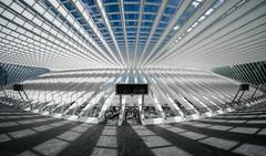 Bahnhof Liège-Guillemins (Der Hamlet) Tags: liegeguillemins lüttich bahnhof rolltreppe licht schatten bögen linien glas stahl beton santiagocalatrava architektur
