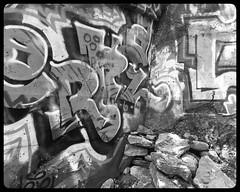 Graffiti I (vui.la9) Tags: