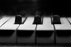 166-Piano (jezcritchlow1) Tags: musicinbw smileonsaturday 365 365the2019edition