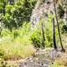 Big Tujunga Canyon River
