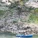 千鳥ヶ淵 小舟の上から仲良く花見(Chidorigafuchi)