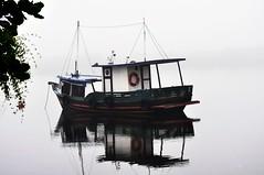 Ancorado (romannoluiz) Tags: mar marola ilhadocardoso cananeia cananeiasãopaulo parqueecológico amanhecer alvorada barco barcopesqueiro neblina nevoeiro imagens