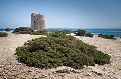 Torre De Ses Portes (andreas.zachmann) Tags: turm baleares landschaft himmel sand sträucher meer esp gebäude eivissa larevista spanien