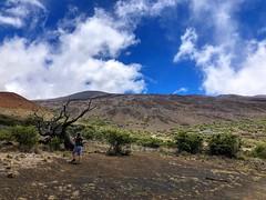 Kona - The Big island - Hawaii (nestje) Tags: kona bigisland thebigisland hilo hawaii