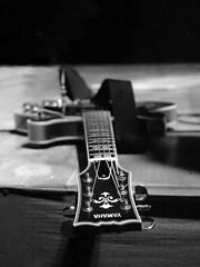 Yahama guitar (Akeu Photos) Tags: smileonsaturday musicinbw guitar music black white bw show