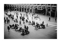 FILM - Lowry-like (fishyfish_arcade) Tags: newyork film 35mm kodak analogphotography compact filmphotography portra400 analogcamera canonsureshotz135 filmisnotdead istillshootfilm bw monochrome mono blackwhite streetphotography occulus