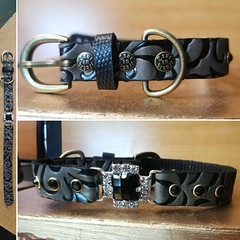 64239352_2222507391179450_3373152681601269760_o_2222507387846117 (ToutEnBronze) Tags: chien chat collier québec handmade collar dog cat