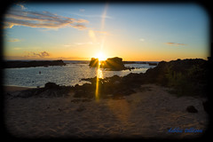 DSC_7368 (dtolly1996) Tags: bigisland hawaii2019 hawaii