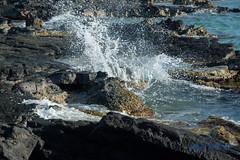 DSC_7210 (dtolly1996) Tags: bigisland hawaii2019 hawaii