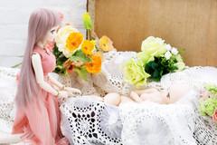 出会い (qrouchan) Tags: ef85mmf12lⅱusm dd canoneos5dmarkⅳ ドルフィードリーム canon ドール dollfiedream doll