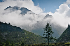 Raising clouds (Marco MCMLXXVI) Tags: italy formazza ossola valle lago superiore cliff mountains clouds hiking nature outdoor wilderness rugged light lightandshadow natura scenery landscape colors sony a6000 ilce6000 pz1650 rawtherapee alps alpi summer tree escursionismo montagna