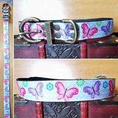 59986739_2166245250138998_1089356478252318720_o_2166245246805665 (ToutEnBronze) Tags: chien chat collier québec handmade collar dog cat