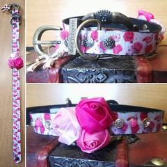 60836577_2188981631198693_2310939481831636992_o_2188981624532027 (ToutEnBronze) Tags: chien chat collier québec handmade collar dog cat