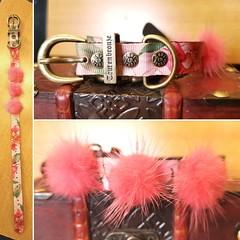 61561373_2197755020321354_3159321618736480256_o_2197755016988021 (ToutEnBronze) Tags: chien chat collier québec handmade collar dog cat