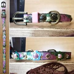 64510372_2226480477448808_7105592597422276608_o_2226480474115475 (ToutEnBronze) Tags: chien chat collier québec handmade collar dog cat