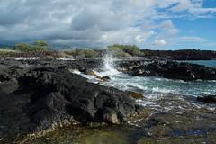 DSC_7222 (dtolly1996) Tags: bigisland hawaii2019 hawaii