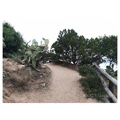 s_IMG_4743 (grounding.style.isolarossa) Tags: isola rossa beach private sardina italy palermo