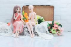 お話 (qrouchan) Tags: ドルフィードリーム ドール dd canoneos5dmarkⅳ canon ef85mmf12lⅱusm dollfiedream doll