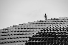 Worker on the roof (BP Chua) Tags: esplanade singapore monochrome blackandwhite worker people street nikon d850 600mm
