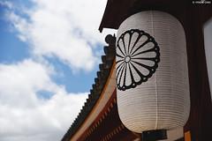 奈良・東大寺 ∣ Todaiji Temple・Nara city (Iyhon Chiu) Tags: 日本 奈良 nara japan japanese 大仏殿 東大寺 奈良公園 buddhist todaiji temple