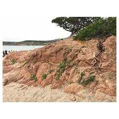 s_IMG_4760 (grounding.style.isolarossa) Tags: isola rossa beach private sardina italy palermo