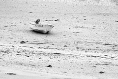 low tide (fhenkemeyer) Tags: france beach brittany bretagne finistère 2018 bw boat minimalism minimalistic