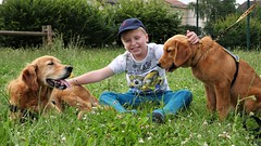 (julia.vergès) Tags: animaux portrait dog chien enfant handicap chienguide chiend'assistance handi'chien