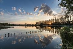 Caught in the fishing pond (Friedels Foto Freuden) Tags: sanstedt angelteich spiegelung sonnenuntergang sunset wolken clouds bäume buhnen canond80