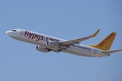 Pegasus B738, TC-ADP, TLV (LLBG Spotter) Tags: tcadp aircraft tlv pegasus airline b737 llbg