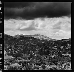 Orinda Hills (Graham Gibson) Tags: hasselblad 503cx 500 series v system film medium format 120 6x6 fuji fujifilm acros 100 bw black white