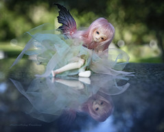 Reflections (twilitize) Tags: adorable adventure art awesome beautiful beauty bjd bjdphotography cool cute cutie camera dolls doll dolly dollphotography darling daring dollworld dollytime dollzone fantasy fiction fun florida floridaphotography fairies fairy girl girls girly good
