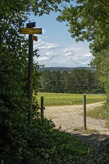Le chemin de randonnée (Lucille-bs) Tags: europe france bourgognefranchecomté bourgogne côtedor combeàlaserpent chemin paysage nature panneau arbre dijon