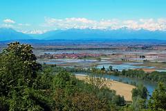 La pianura del riso (FM54TO) Tags: piemonte pianura risaie
