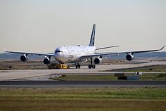 Star Alliance (Lufthansa) Airbus A340-313 D-AIGX (M. Oertle) Tags: staralliance lufthansa airbus a340313 daigx