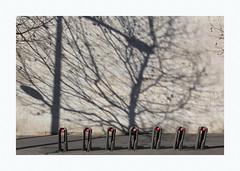 Sept rouge impair et manque (hélène chantemerle) Tags: extérieur mur ombre arbres soleil rouge noir outdoor wall shadow trees sun red black