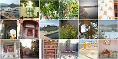 raj mosaic 6 (belight7) Tags: india rajasthan collage pushkar temple lake brahma flowers trees om art ganesh