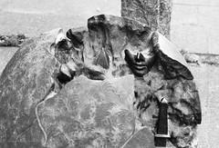 Kunst in der City (Hans_59) Tags: hamburg analog art sw structure struktur skulpture skulptur film nikon f100 kontraste kodak kodaktrix400 kunst 35mm