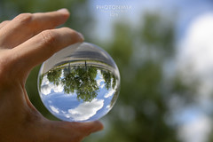 Inversion (Andy Brandl (PhotonMix)) Tags: inverted glass globe bubble hand handheld dof trees upsidedown z7