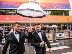 Rainy smokings @ Cannes festival (Phg Voyager) Tags: summilux 24mm leica mp cannes festival movies umbrella rain palace frenchriviera phgvoyager urban city urbanscape cityscape boys smokings dressed crossing road fun color outdoor