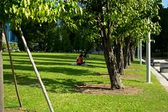 taking shade from the sun (kadok_tupac) Tags: nikonphotography nikon streetphotography d3300 35mmdx