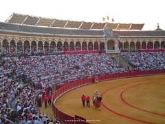 This is the Plaza de Toros de la Real Maestranza de Caballería de Sevilla. It can hold more than 12,500 people. Bullfighting is a traditional Spanish sport that is still popular in Seville. It might not be for everyone, but it is definitely one of the man (TreasuresOfTraveling) Tags: spanishtreasures travelgram bullfighting bestplacestogo traveltheworld guyswhotravel españa seville wanderlust gaytraveler gaytravel travelblogger gaytravelblog globetrotter lamaestranza worldtraveler europe photooftheday andalusia followmefaraway bullring treasuresoftraveling theglobewanderer spain travelspain travelphotos sevilla bullfight passportstamps plazadetoros