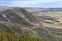 Carleton-sur-Mer | Gaspésie | Views from Mont-St-Joseph (nizega) Tags: canada quebec gaspesie baie de chaleurs mont saint joseph foret forest aerial view barachois bird spring 2019 nizega amazingshot carleton sur mer